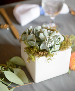 wedding-slider-img2